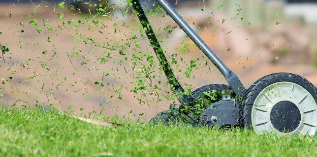Picking Right Lawn Mower